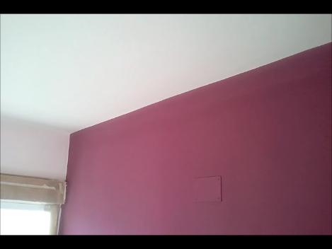 Pintura Plastica Color Rosa Claro y Morado Oscuro