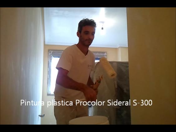 Pintura plastica Procolor Sideral S-300 3