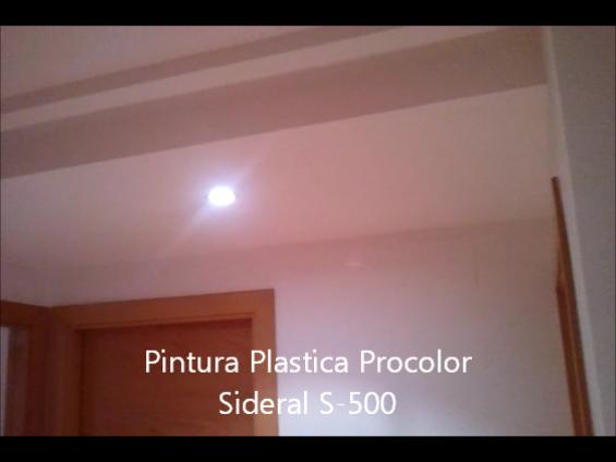 Pintura Plastica Procolor Sideral S-500 3